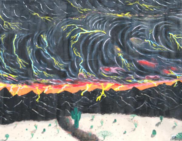 Skunk In Monsoon Photography Art | ArtbyAEllis