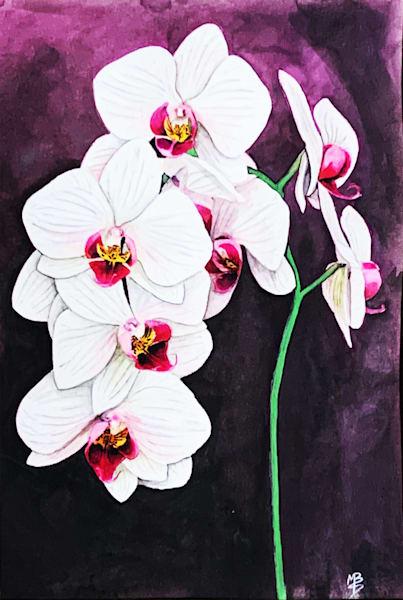 White Orchids Art | Michael Bruley Studio