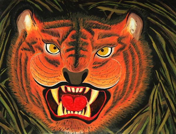 Angry Tiger Photography Art   ArtbyAEllis