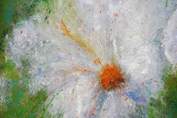 Flower Detail Art   S Pominville