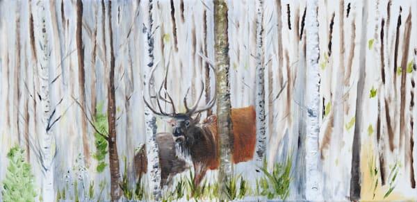 Elk In The Birch Art   Drivdahl Creations