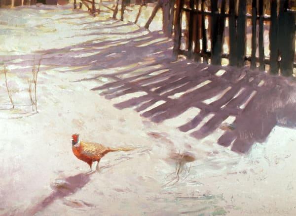 Pheasant Art | robertorduno