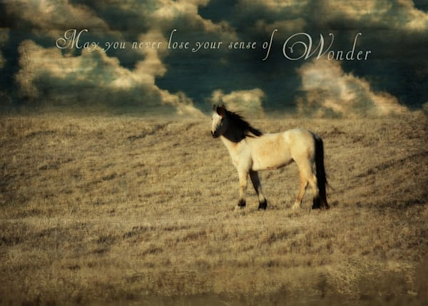 Embellished Buckskin Horse Art