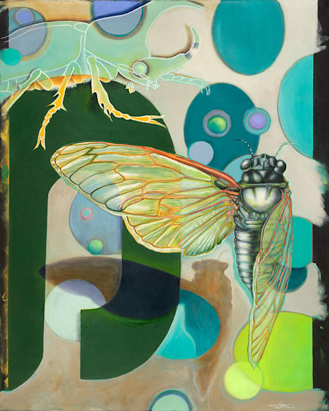 """Cicada 2"" fine art print by Peter Koury."