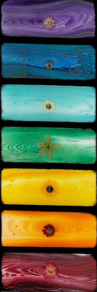 Flower Chakra Art | Breathe Art Paintings