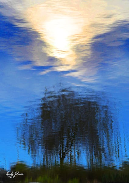 Sun And Weeping Willow Reflections Art | Randy Johnson Art and Photography