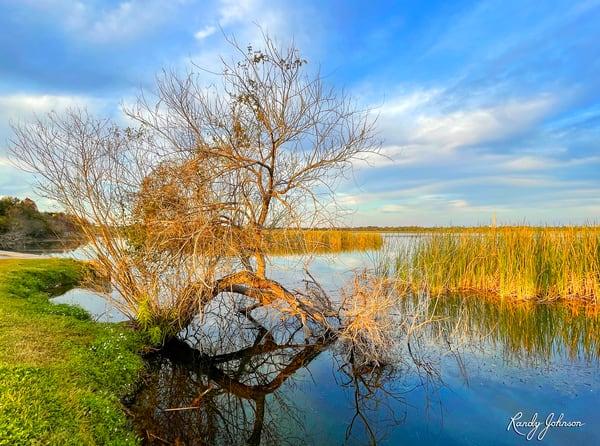 Last Sun On The Lake Art | Randy Johnson Art and Photography