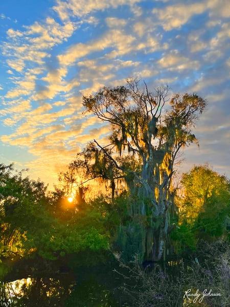 Sunset At Circle B Bar Reserve Art | Randy Johnson Art and Photography