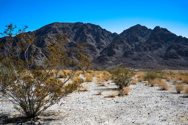 La Quinta Desert Area 1379 Photography Art | Jim Grossman Photography