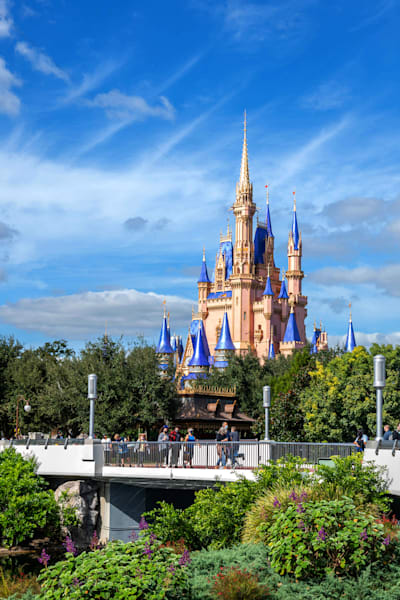 Morning Light And Cinderella Castle Photography Art | William Drew Photography