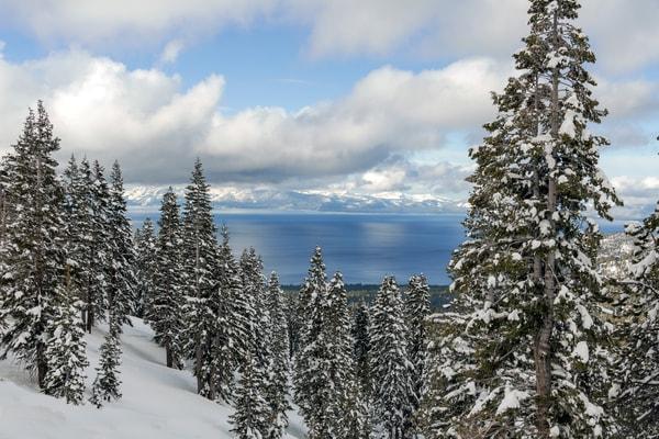 Lake Tahoe Perfection Photography Art | Great Wildlife Photos, LLC