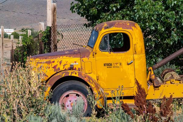 Yellow Midas Truck  Photography Art | Great Wildlife Photos, LLC