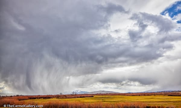 Spring Storm, Nevada Ii Art | The Carmel Gallery
