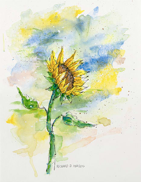 Sunflowers 9 Art | Cincy Artwork