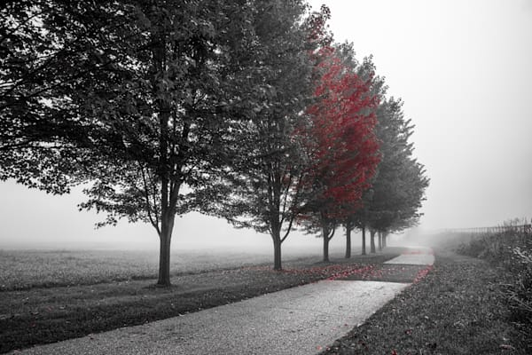 The Coming Fall Photography Art | Garsha18 Fine Art Photography
