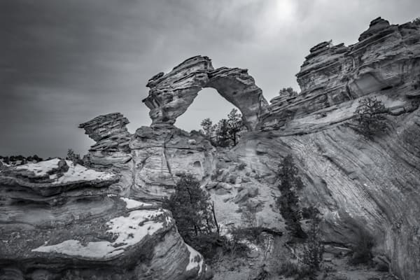 Inchworm Photography Art | Garsha18 Fine Art Photography
