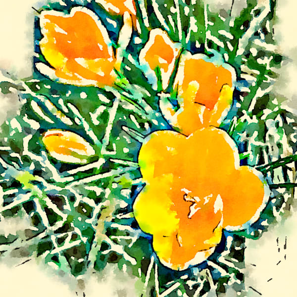 watercolor-photo, flower, yellow-flower, crocus