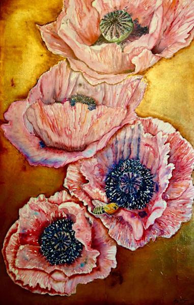 Mark's Poppies Art   Amy Tigner Art