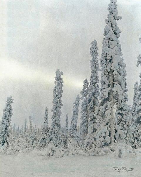 Alaska's Beauty
