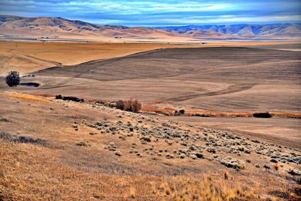 Rolling Hills In Montana Photography Art | KAT MILLER-PHOTO ARTIST
