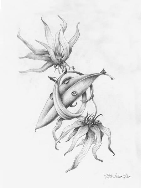 Euphonic Reverie - Original Drawing for Sale - The Art of Ishka Lha