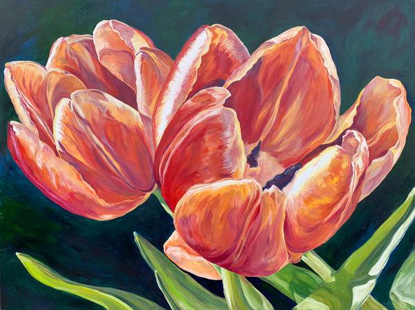 Tulip Sunset Art | ebaumeistermcintyre