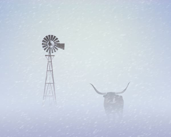 Texas Blizzard Art | Jim Livingston Art