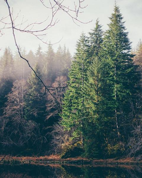 Winter Lake 2015