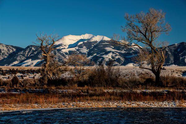 Fan Flanked By Two Cottonwoods  Photography Art | Monty Orr Photography