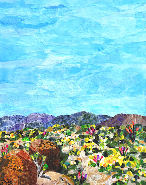 Spring In Anza Borrego Desert Park Art | Poppyfish Studio