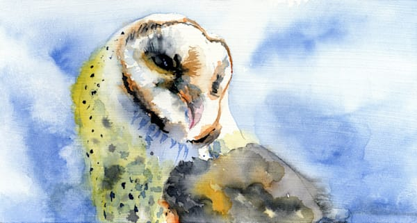 Superb Owl  Art | Machalarts Watercolor Studio