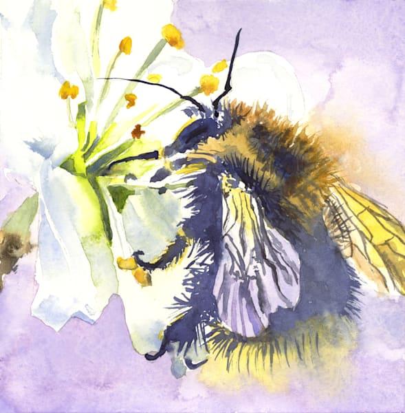 Mr. Bee Art | Machalarts Watercolor Studio