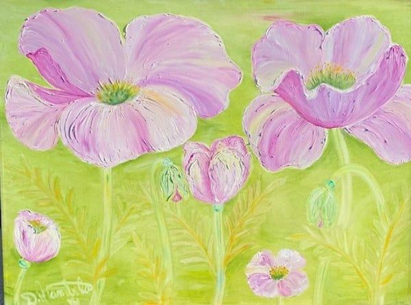 Rebirth Of The Pink Poppy  Art | Heartworks Studio Inc