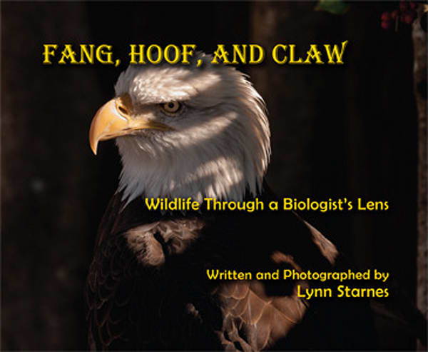 Fang, Hoof, And Claw   Wildlife Through A Biologist's Lens | Great Wildlife Photos, LLC