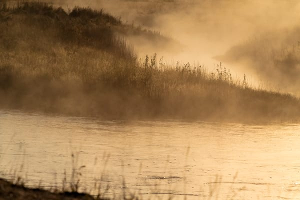 Sunrise Through Change Of Seasons Photography Art   Great Wildlife Photos, LLC