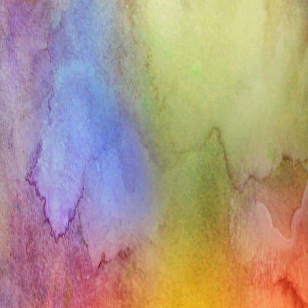 Flying Colors Photography Art | Carol's Little World