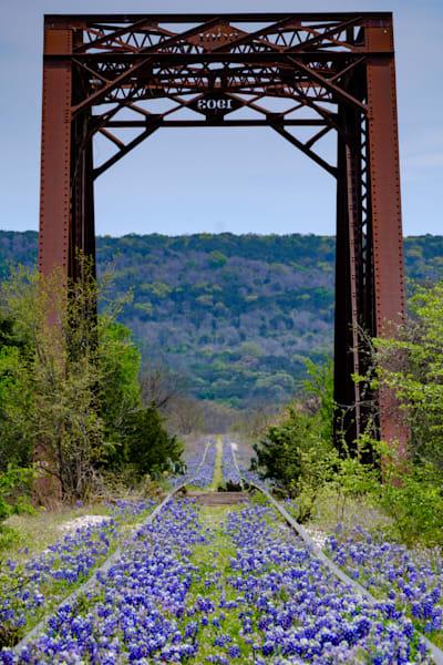 Texas Bluebonnet Bridge