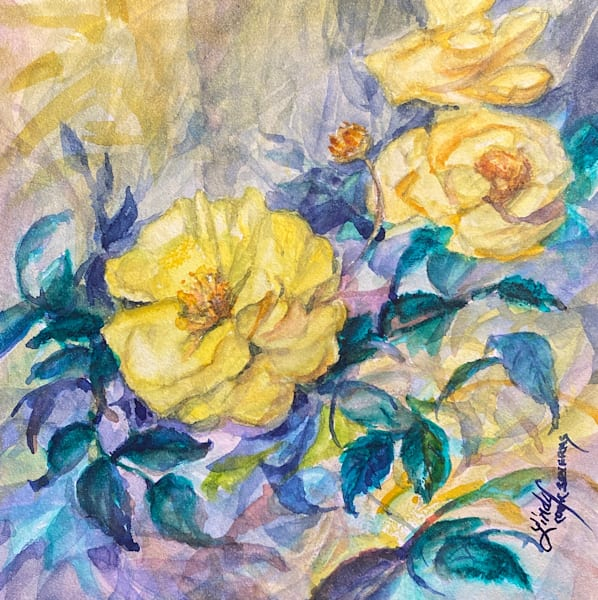 Lindy Cook Severns Art | Yellowest Rose of Texas, original watercolor