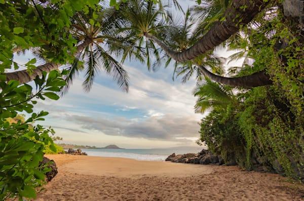 Palm Beach Photography Art | Douglas Hoffman Photography