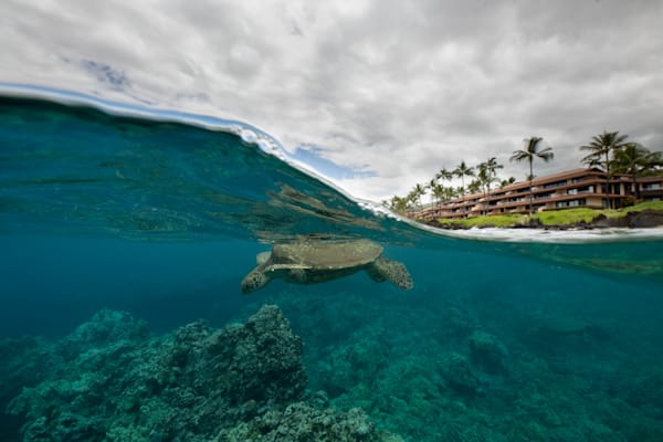 Makena Surf Photography Art | Douglas Hoffman Photography