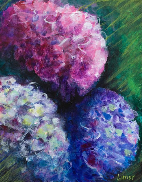 Hydrangea Print Art   Limor Dekel Fine Art