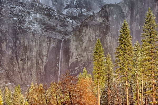 Bridalveil Falls Pine Trees Art | Michael Blanchard Inspirational Photography - Crossroads Gallery