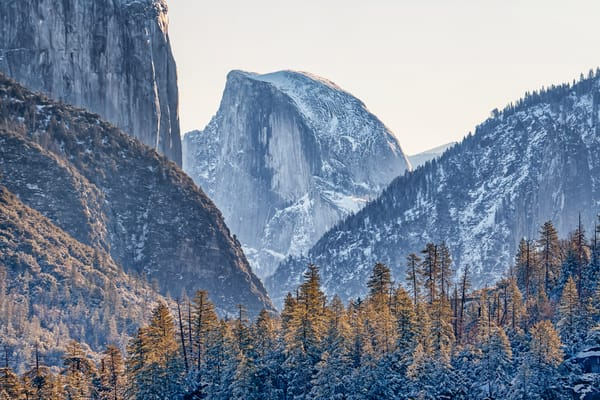 Yosemite Half Dome Forest Art | Michael Blanchard Inspirational Photography - Crossroads Gallery