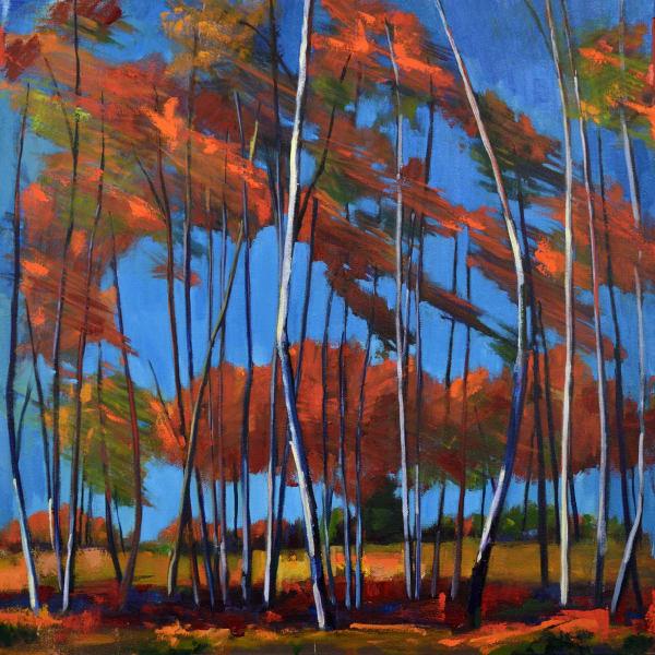 Windy Birch Grove Print Art | Jenn Hallgren Artist
