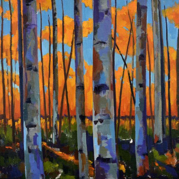 Birch Sunset Print Art | Jenn Hallgren Artist