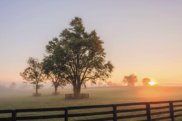 Ky Horse Sunrise 8616 12 Photography Art   Jeff Rogers Photography, Inc.