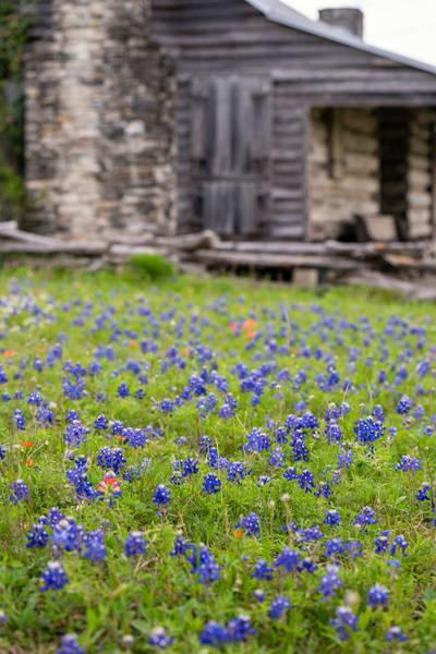 Texas 4617full Photography Art | Jeff Rogers Photography, Inc.