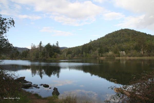 Calmness At Spring Lake Art   Susan Searway Art & Design