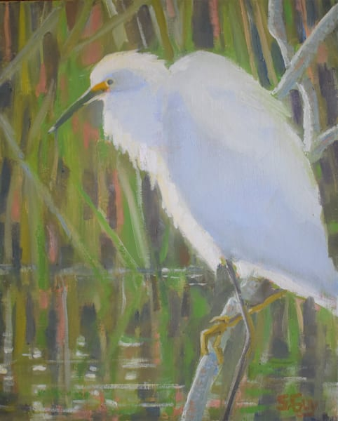 Time For Reflection Art | Sharon Guy
