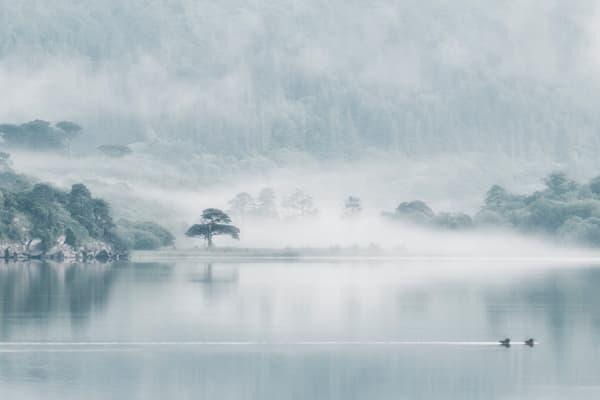 Killarney Lakeside Photography Art | Felice Willat Photography